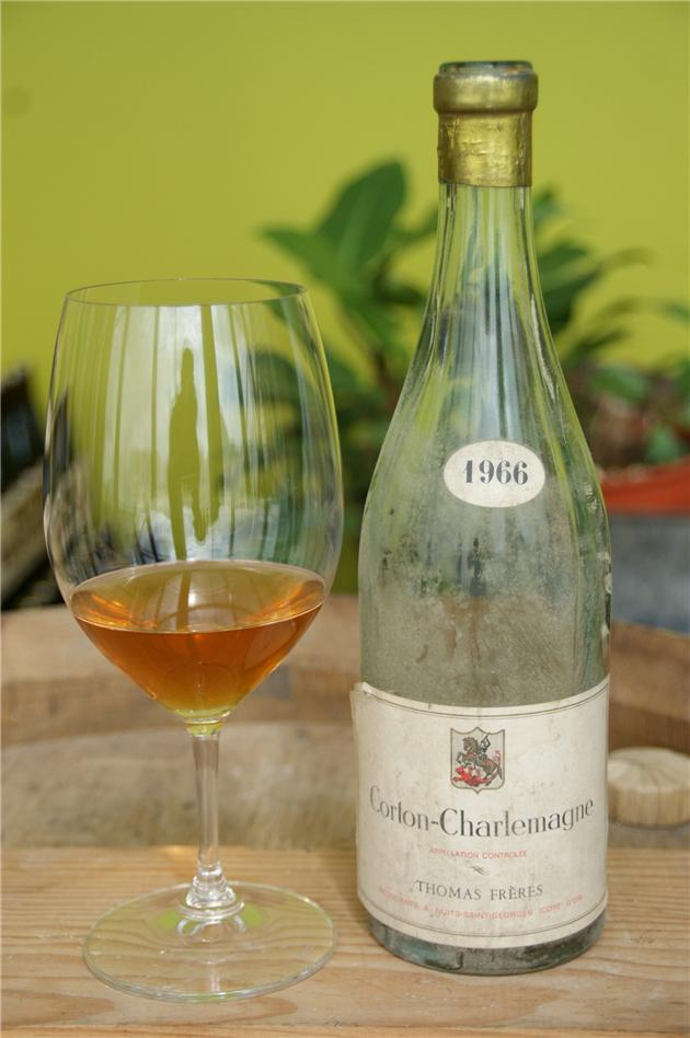 Never judge a wine by its color - 1966 CORTON CHARLEMAGNE